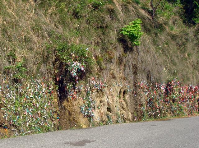 Фото: дорога в Рицу