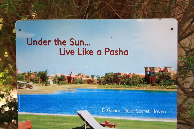 Под солнцем... Живи как Паша