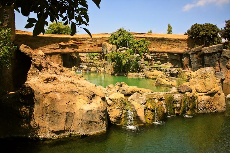 Фото: Биопарк в Валенсии