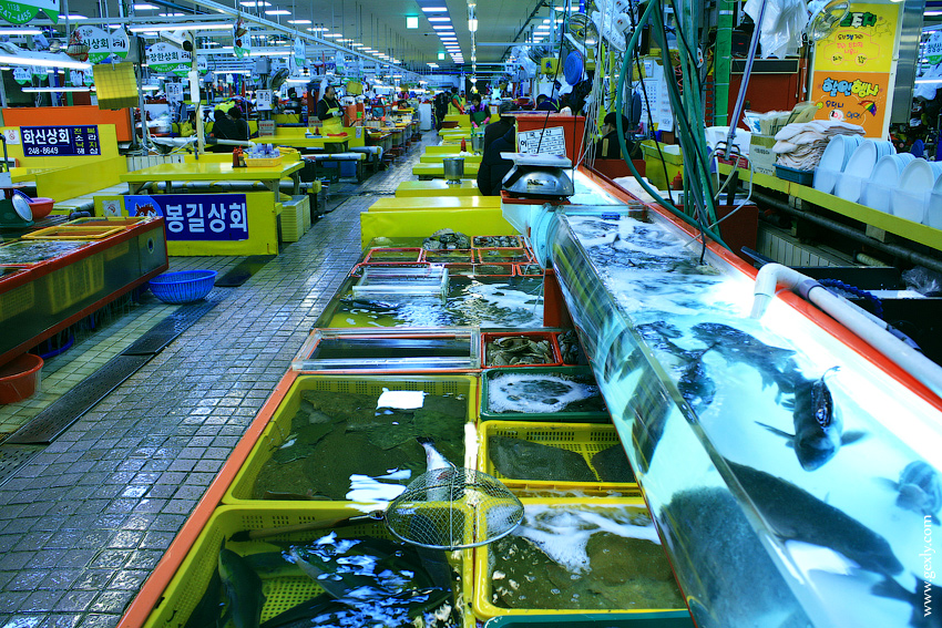 рыбный рынок Джигальчи